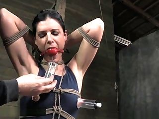 Cougar India Summer Nip Absorption In String Restraint Bondage